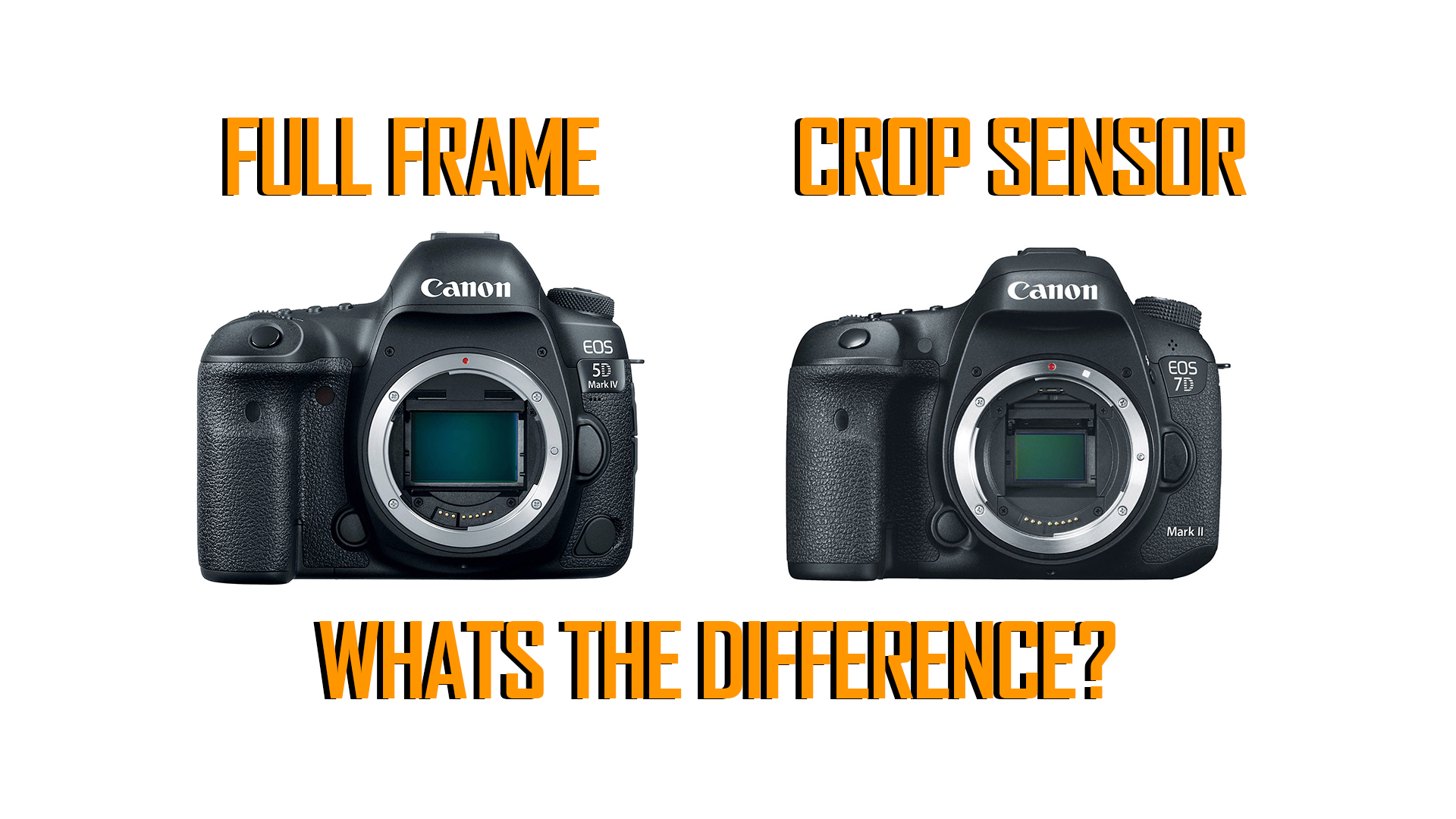 The Difference Between Full Frame and Crop Sensor - LP Bloggery